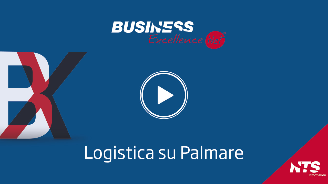 09 BusinessNet video LogisticaPalmare